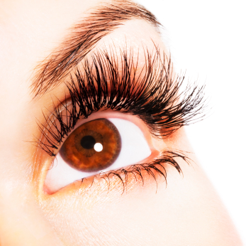 Lash Extension at Moxie Salon